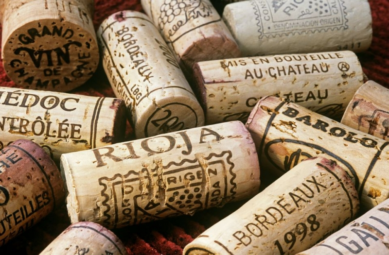 Bordeaux Wine - Beginner's Guide