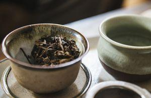 Your Guide to All Things Tea